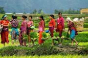 festival tours in nepal