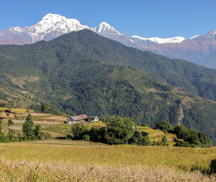 Best of Nepal Tour   Tour in Nepal